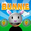 Play Bunnie game